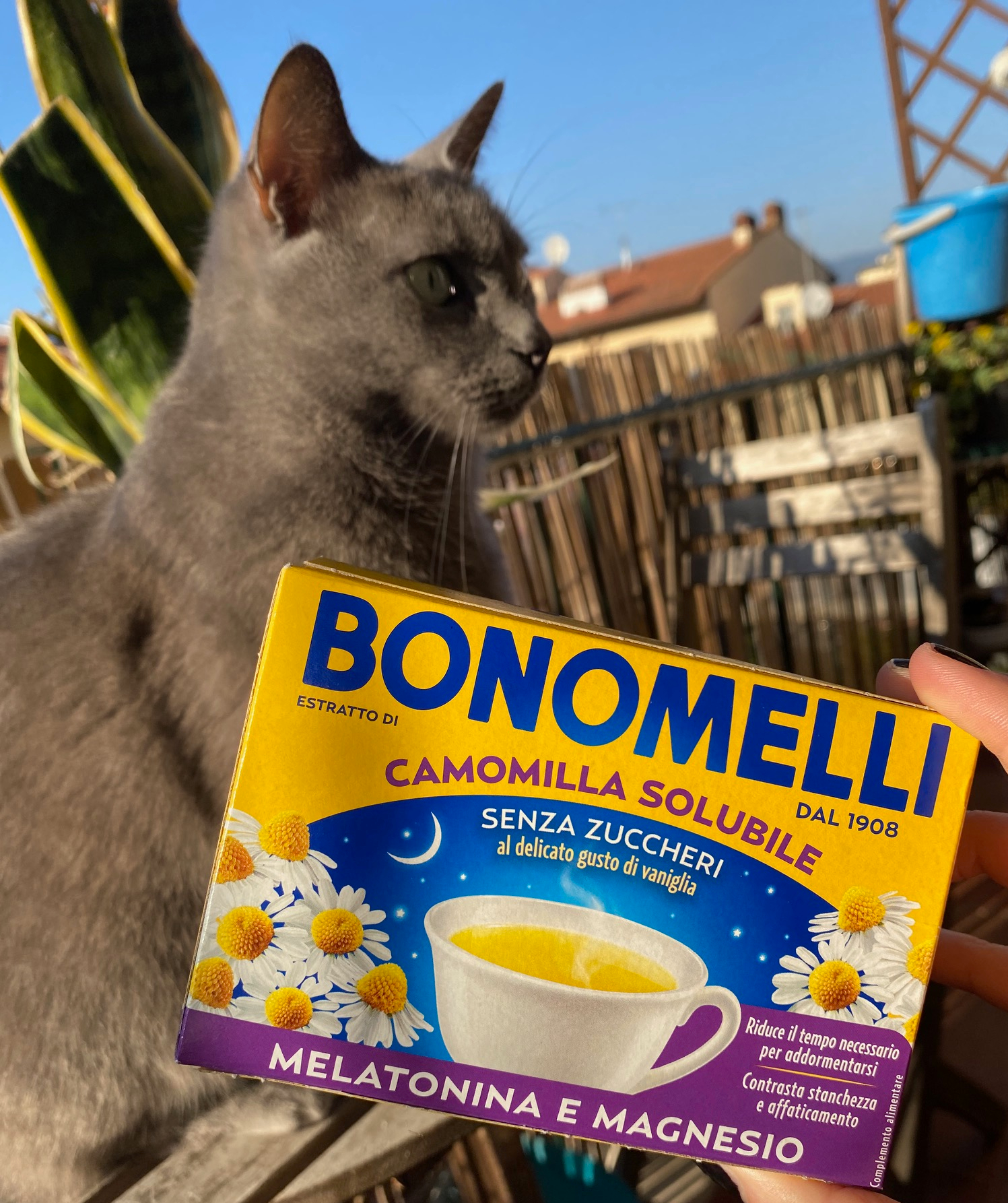 bonomelli-melatonina